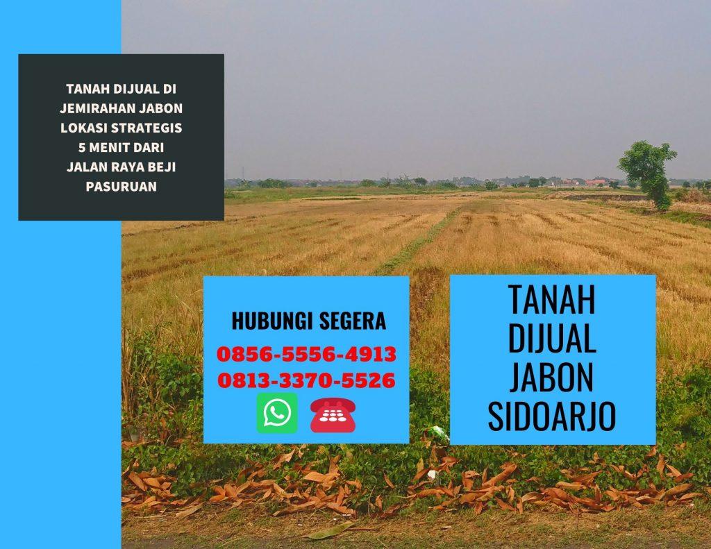 Investasi Tanah Saat Corona di Sidoarjo